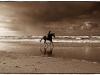 Einsamer Reiter am Strand