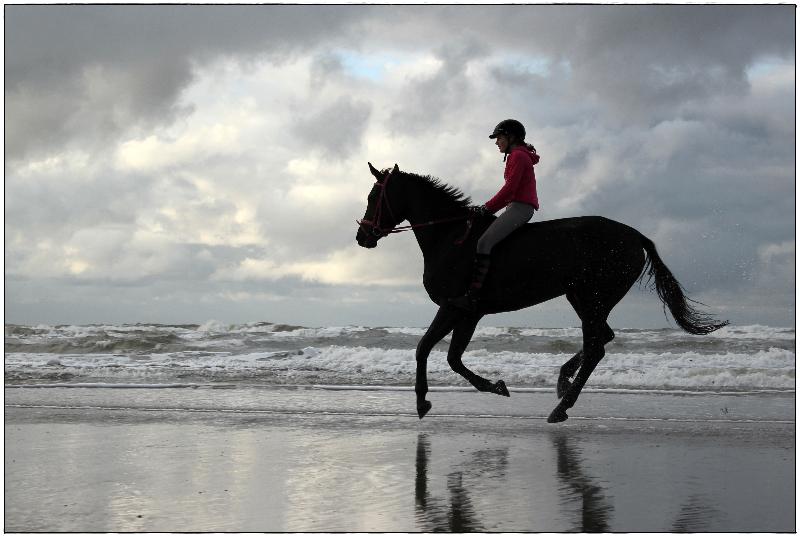 Reiter galoppierend am Wassersaum