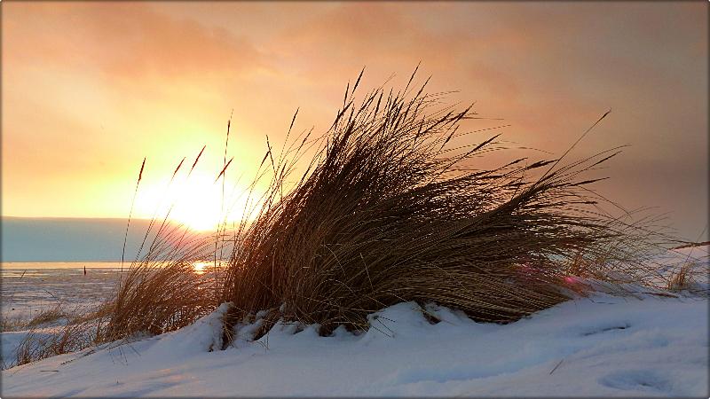 Untergehende Sonne im Winter