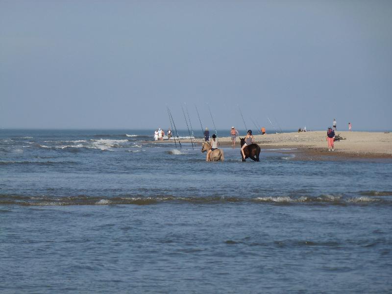 Reiter und Angler am Nordstrand